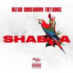Download Music Mp3:- Wizkid Ft Chris Brown And Trey songz – Shabba