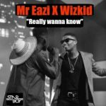 Download Music Mp3:- Wizkid Ft Mr Eazi – Do You Really Wana (Ole)