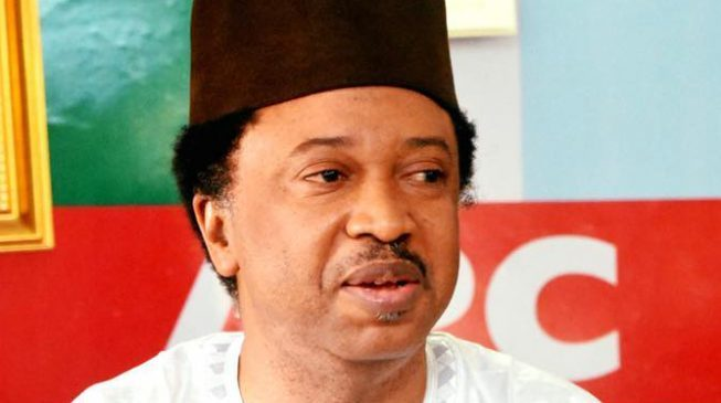 """""""I Will Contest In 2019"""" – Shehu Sani, To Announce New Party In 48 Hours"""