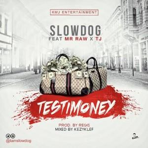 SlowDog-Testimony-Feat-Mr-Raw-Tj-Art