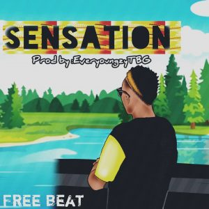 Download Freebeat:- Sensation (Prod By EveryoungzyTBG) - 9jaflaver