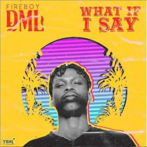 Download Music Mp3:- Fireboy DML - What If I Say - 9jaflaver
