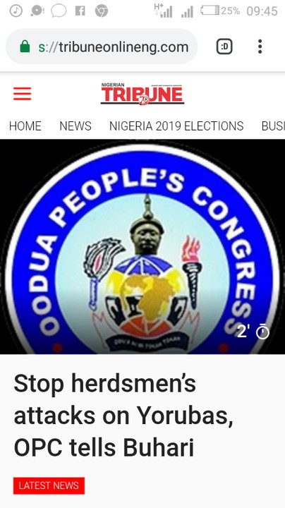 You Should Stop Herdsmen From Attacking Yoruba – OPC Instructs Buhari