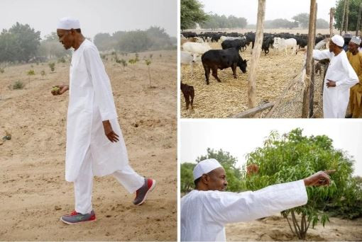 Presidency Issues Statement On The Ruga Settlement Backlash, Says 'Its To Resolve Farmers/Herders Conflicts'
