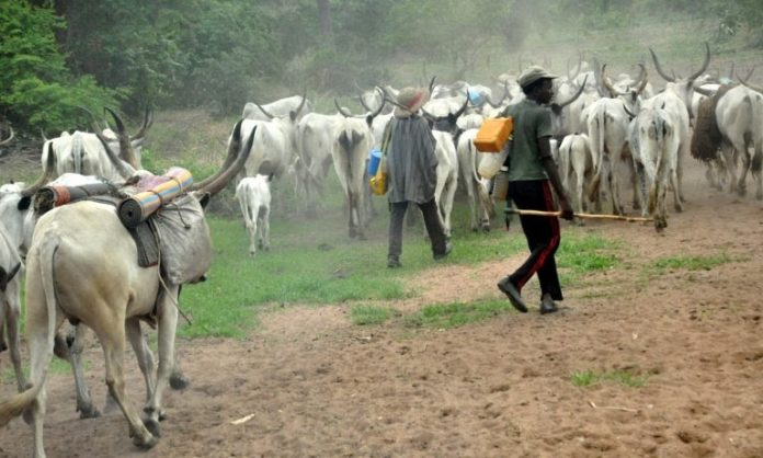 #NAIJA — We Don't Need It – Herdsmen Hail Suspension Of Ruga Settlements
