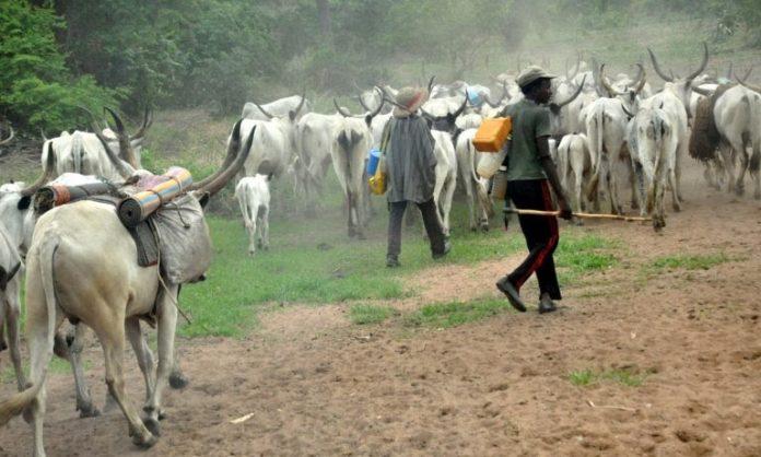#NAIJA — We Don't Need It – Herdsmen Hail Suspension Of Ruga Settlements