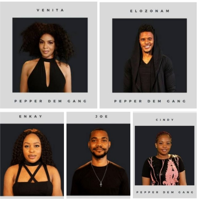 BBNaija 2019:- Ebuka Speaks On 5 New Housemates Being Fake