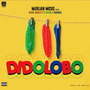 Download Music Mp3:- Naira Marley Ft Cblvck, And Mohbad – Dido Lobo.